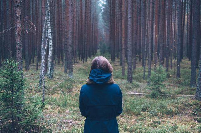 člověk v lese.jpg