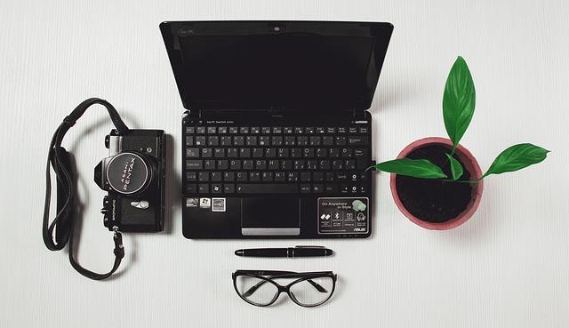 počítač, foťák a kvet.jpg